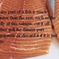 Preparing a Salmon Fillet